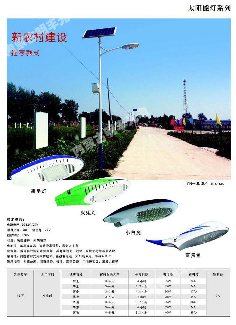 新农村建设,推荐款式 TYN-00301(H:4-6m)