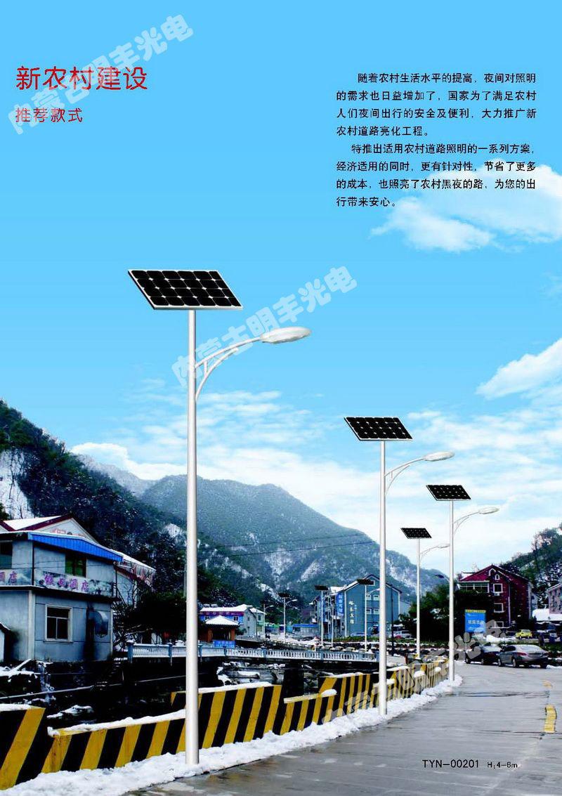 新农村建设,推荐款式 TYN-00201(H:4-6m)